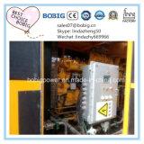 500kw 천연 가스 Biogas Sgenerator 세트에 30kw