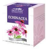 Extrato de Echinacea para alimentos, Supplment, Cosméticos