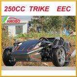 2017 Drift Trike con windshiled y el alerón trasero