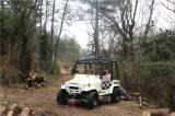 200cc UTV a quattro tempi, 250cc ATV per gli adulti