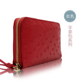 Newly Various Colors Trends Wallet / Purse Designs for Womens Accessories
