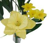 Singolo gambo fiore artificiale/di plastica/di seta del Daffodil (XF30025)