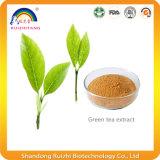Extrait de thé vert pour la perte de poids