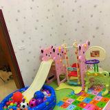 Roze Plastic BinnendieDia en Schommeling voor Meisjes wordt geplaatst (HBS17010B)