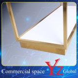 Estante de la promoción del estante de la exposición del estante de la percha del estante de visualización del soporte de visualización del acero inoxidable del estante de visualización (YZ161705)