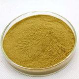 Extrato natural do caqui de 100% com Leucoanthocyanin