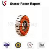 Saldatura di bobina dello statore e rotore Riveting dello statore per l'armatura e l'attrezzo