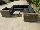 8 Stücke rundes Rattan-Sofa-gesetzte im Freienpatio-Möbel-