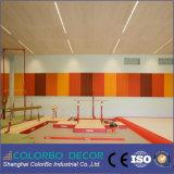 El panel decorativo de las lanas de madera del material de absorción sana