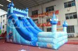 Gefrorenes Schloss-aufblasbares Wasser-Plättchen