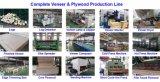 Furnierholz, das Maschine, komplettes Furnierholz-Gerät, Furnier-Blatt herstellt Maschine, Möbel herstellen Maschine herstellt