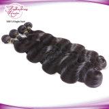 一等級の加工されていないブラジルのバージンの人間の毛髪のよこ糸