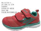 Trois couleurs deux chaussures de sport de taille