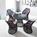 Tableau dinant de PE de rotin de meubles extérieurs environnementaux de jardin avec quatre présidences
