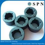 Металлокерамические ферритовый магнит для различных двигателей прибора