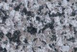 Künstliche Quarz-Stein-Platte-Druckerei-Pflanze