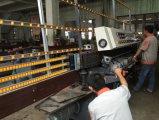 Le bord biseauté professionnel machines de Glace de rétroviseur