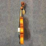Le tilleul Poluare violon la vente en Chine