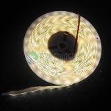 Luz de tira flexible de la alta calidad SMD2835 el 120LEDs/M LED IP65