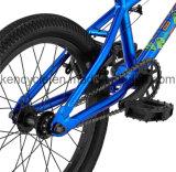 20 скачка BMX/Sy-Fs1801 грязи Bike/Bicicleta/рамки BMX дюйма hi-10