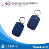 Trousseau de clés Shaped d'ABS du nom Em4100 125kHz de Chambre faite sur commande d'IDENTIFICATION RF