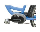 """28"""" Ciudad de 250W MID-bici del motor eléctrico (TDB05Z-1)"""