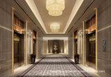 80%のウール20%ナイロンAxminsterのホテルのカーペット