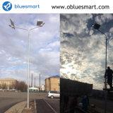 IP65 30W en una calle de las luces de linterna solar al aire libre