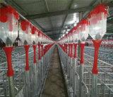 養豚場の家のための家畜装置の自動チェーンブタの挿入システム