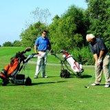Eléctrico alimentado plegable manual del carro de golf con freno (DG12150-D)
