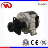 12 motor de la C.C. del sillón de ruedas eléctrico del kit 36V250W de la conversión de la pulgada