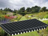 Plástico Customed Hidroponia de plantas e sementes de viveiro bandejas com melhor qualidade