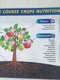 Fertilizante orgânico de algas e fertilizantes NPK Seaplus