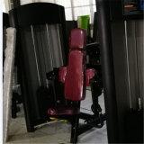 ボディ固体、二頭筋の三頭筋の三頭筋機械二頭筋機械Xf11