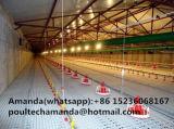 Griglia e piccolo sistema di innalzamento della pavimentazione del pollo per l'azienda avicola