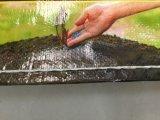 OPP Beutel/gesponnener Beutel für verpackennahrung/Düngemittel/Zufuhr/Reis
