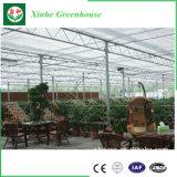 Invernadero de cristal económico grande con el sistema de ventilación para la venta
