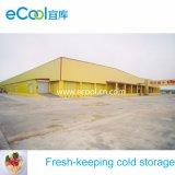Volume grande armazenamento frio de mantimento fresco personalizado do alimento da capacidade elevada