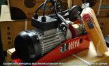 Mini grue à chaînes électrique de vente supérieure de bonne qualité avec le chariot PA500