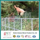 Забор из козьего молока Панель управления/ проволочной сетке крупного рогатого скота Ограждения панели/ ограды фермы