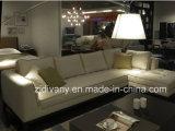 Divany現代様式ファブリックソファーの居間のソファー(D-68)