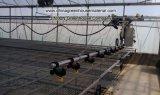 꽃 벤치를 위한 폴리탄산염 장 온실
