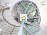 Профессиональный дизайн из стекла из нержавеющей стали спиральной лестницей