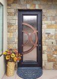 Bello portello di entrata esterno del ferro di disegno moderno