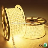 Décoration 220V ETL 110V LED Strip White 60LED Éclairage extérieur