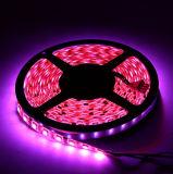 Im Freien Licht der 5050 RGBW Dekoration-imprägniern Streifen-Seil-LED