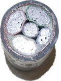 Le conducteur 4-Core XLPE d'Al a isolé le câble d'alimentation engainé par PE blindé en acier de bande