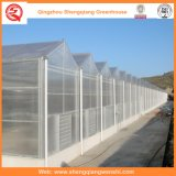 Agricultura Multi Span PC Hoja Green House para la siembra