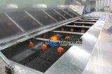 Machine de nettoyage de fruits à légumes Dup-5000 par pulvérisation d'eau supérieure et inférieure