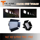 Teatro profissional Cw / Ww e TV LED Studio Flood Light